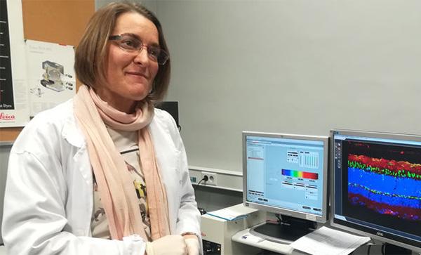 CABIMER , la US, la ONCE y la Fundación Pública Andaluza Progreso y Salud, colaboran en una investigación sobre la DMAE