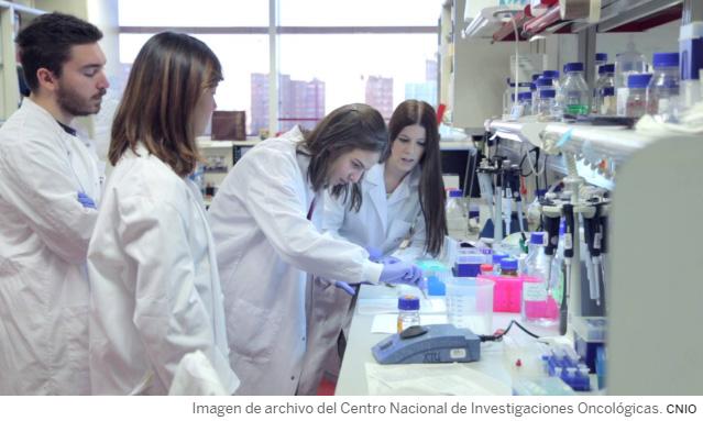 Un grupo de prestigiosos investigadores españoles alerta del «colapso» inminente del sistema científico, en una carta enviada a EL PAÍS