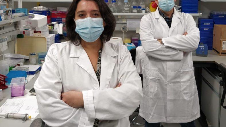 Investigadores andaluces estudian la relación entre factores ambientales y el cáncer de páncreas
